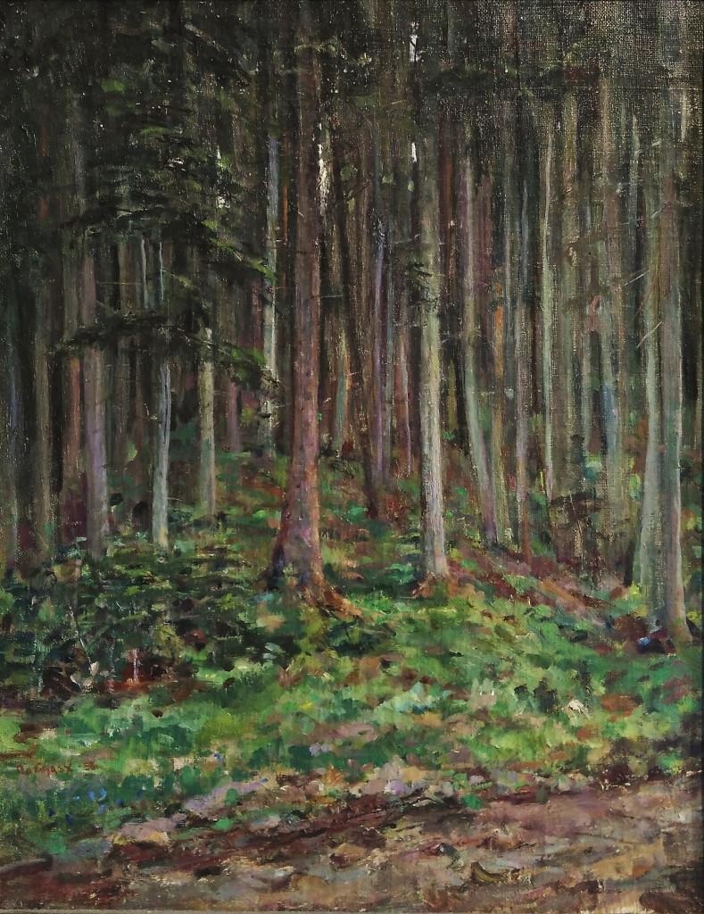 Collinásy Juraj, V lese